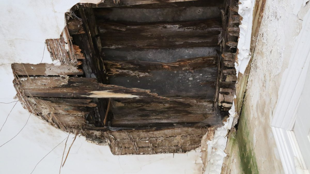 GSB Holzschutz - Holzbalkendecke mit Braunfäule und Schwamm